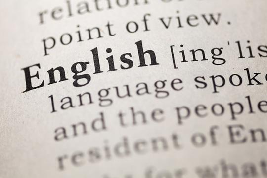 носитель английского переводчик